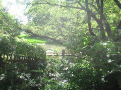 入ってすぐの場所に近代期における日本での肥料や土壌研究に関して功績を残したお雇い外国人であるオスカル・ケルネルが駒場農学校で教鞭をとっていた時に使用していた実習用の田んぼ「ケルネル田圃」が今でも残されています