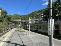 途中甲斐大和駅で特急の通過待ち。