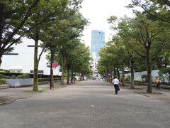 NHK横の代々木公園けやき並木を通って渋谷方面へ