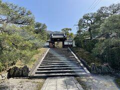 ぷらぷらと歩いていたら、霊鑑寺に到着。  ひと差しの光がお出迎え☆