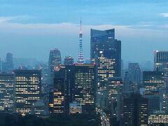 東京タワーをさらにズームします!  いつもとカラーが違います。