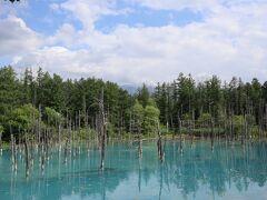 白金・青い池 気のせいか晴と曇では青さが違って見えます