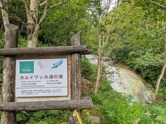 バス停から徒歩10分弱で滝に到着。