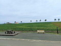 車窓にメルヘンの丘が見えてきたら、もうすぐ女満別空港です。