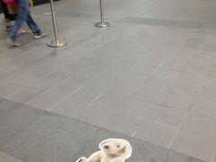 空港から地下鉄に乗って中山駅のホテルに向かいます。 荷物は機内持ち込み用の小さなカートひとつだけなので身軽な移動です。  台北捷運文湖線 松山機場站→南京復興站(ここで乗り換え)松山新店線→中山站 地下鉄コンコースにIKEAのプロモーションが。うちと同じ犬のヌイグルミがいたので「あっウチの子~!」と思ってつい撮影。どういう心理なのか。