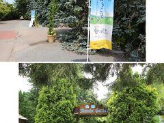 次に、真鍋庭園を訪れました。目的はエゾリスに会うためです。昨年9月に訪問したときにピョンピョン跳ねまわるように動いているのを見かけたので期待して訪れました。
