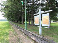 次にやってきたのは市民憩いの場のスポット緑ヶ丘公園です。このベンチはかつてギネスにも認定された世界一長い400mベンチです。ここにもエゾリスがたくさんいて、今まで訪れたときは必ずこの周辺を走り回る愛らしい姿を見ました。
