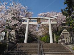 お次はすぐ近くにある宗忠神社へ。  ★神楽岡 宗忠神社 https://munetadajinja.jp/