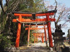 お目当ては竹中稲荷神社の鳥居でした~☆