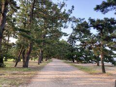 サイクリングで行く道はこんな感じで、砂利なのでちょっと漕ぎにくいですね 歩いてる方もいました
