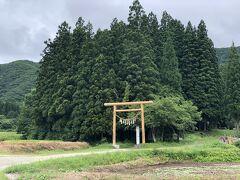 田んぼの中の未舗装の道を暫く歩くと、右手に樹々がこんもりと茂る高倉神社の社叢が見えます。