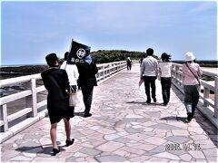 弥生橋を渡って青島へ