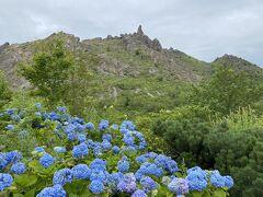 有珠山と紫陽花  ゴツゴツとした岩山がいい感じ