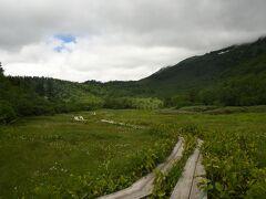 自然園にはいくつかの湿原があり、これを巡る登山道が展開している。私たちは展望湿原を目指した。標高2010m。約3kmの道のりで、ゆっくり歩けば往復3.5-4時間と記されている。  上り坂の所もあるが、木道歩きが多く、比較的楽だった。
