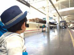 到着したアトーチャ駅では、高速列車専用プラットフォームに降り立った。在来線や地下鉄、さらに植物園のようになった旧駅舎には、専用の通路からアクセスするようになっている。