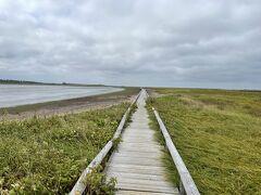 風蓮湖と海とをしきる砂州である春国岱の木道も散策