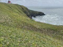 2日目最初の立ち寄り場所は、霧多布岬。