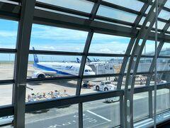 今回は航空会社ANA利用 本業の仕事が激減して出向で他の仕事をしているなんて(辛) 全日空さんコロナに負けず頑張れ