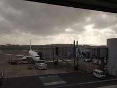 はい、無事飛ぶようです!こちらに乗って無事に運んでもらえますように~着陸できなければ羽田に戻りますって恐怖の宣言もありましたが、、