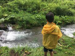 雨が少し上がったので、上の孫(8歳)はお楽しみの渓流釣り。蓼科の恒例行事です。