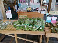 温泉やバスターミナルがある、「道の駅 桜の郷荘川」。 農産物直売所には、わらび・姫たけのこなどの山菜がたくさん。