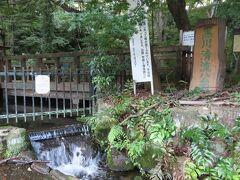 【黒川清流公園 日野 2021/08/19】  久し振りの快晴、夕方からポタリング&外食を兼ねて外出。甲州街道を走り、黒川清流公園へ行きました。木々に囲まれ、清流の音を聞きながら静かで良い所です。ゆっくりしようと思いましたが、蚊がまとわりついてきたので、早々に退散しました。 所在地: 〒191-0052 東京都日野市東豊田3丁目28-16-1 時間: 24 時間営業