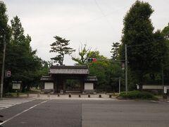 膳所公園 ここは城跡を整備された公園 桜の頃には、見事な光景を醸し出す。