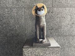 ただいま~  今更ですが、ハーベストの各ホテルの中にはこの犬の銅像があります。 これ、ハチ公。 東急の本拠地が渋谷だから。  マスクがずれていたので、直してあげました。
