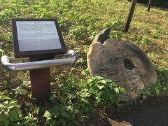 円形の石がありました。 ミクロネシアのヤップ島でお金として使われていたそうです。