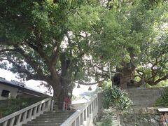 迷い迷ってようやく目的地の  「山王神社」