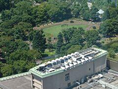 タワー館のエレベータホールから日比谷公園を眺めるとオリンピックのデコレーションが見えました。