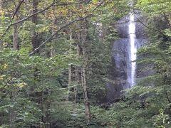 こちらは「白糸の滝」  奥入瀬渓流の左岸にかかる細長い滝で落差は30m。 渓流の流れから奥まった部分にかかっており、手前にある木々の間から見え隠れする姿が美しい滝とのこと。