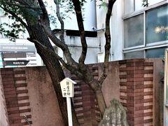 ホテルから銀座へ行く途中にある泰明小学校は由緒ある現役の小学校ですが、よくみると記念碑と掲示板数種がありました。