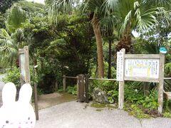 滝もそうですが、実は八丈島へ行ったなら絶対入りたい温泉があるんです! それはこちら、裏見ヶ滝温泉です。
