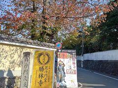 東福寺駅から歩いて、勝林寺へ。4トラの旅行記で知ったお寺です。  お堂の正面からではなく、横から入るような案内でした。