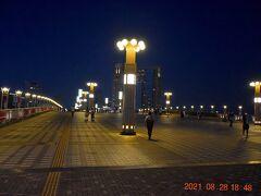 すっかり暗くなって夢の大橋 https://www.yurikamome.co.jp/sightseeing/facility/000676.html までやってきた。