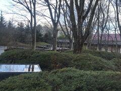遠刈田で迎える朝  森の中にお泊まりした感じです。 ちなみに、せっかくのロケーションなのに一切散歩とかしないで飲んでました(笑)