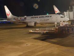 20時30分、定刻通り離陸。 途中、仙台や千葉の夜景をみていたら、もう羽田。 無事に帰ってきました。 あ~日本発見!楽しかった (^^♪