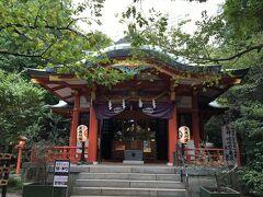 芝公園内にある東照宮にもお参りします。 東照宮内には、東京都の天然記念物に指定されているイチョウの木がありました。徳川家光が植えたものだそうです。