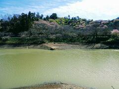佐久間ダム湖です。 湖は一周2.4kmだそうです。