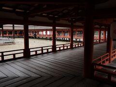 いざ厳島神社の境内へ。  静か。幻想的。