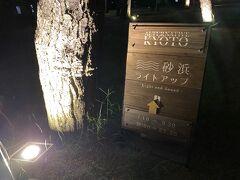 松林が始まり、ライトアップの看板が見えました