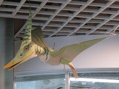 駅構内も恐竜だらけ こちらはゆるさがいい感じ。 フクイラプトルかな?