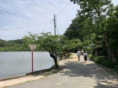 五十公野公園へとやってきました。入口で自転車を止めまして、「あやめ園」まで5分ほど歩きます。左側は「枡潟」という池です。この「枡潟」はため池のような普通の池かと思ったら、このように森の中を水が流れている場所があるのですね。