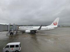 今回は伊丹空港からスタートです。JALが夏季限定で伊丹―旭川を飛ばしているからです。伊丹空港は雨でして、離陸しても分厚い雲の中を飛行していました。