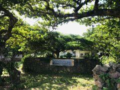こんなにみどりが美しいビジターセンターのお庭も、 台風後は落ち葉や折れた木で、散らかってしまいます。
