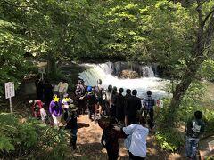 次に向かったのが、さくらの滝。  名称見て、最初は桜の木が有名な場所かなと思ってました。  斜里川上流のこの場所は、サクラマスが遡上し滝を登る姿が見られる、珍しいところだそうです。  サクラマスの遡上は6月上旬~8月上旬が例年のシーズンだそうです。