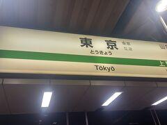 50分ほどで東京駅に着きました。