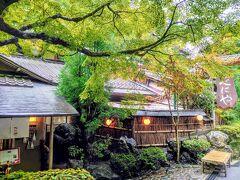 「風情ある建物&緑鮮やかなモミジ」が、和テイスト全開です(^^)