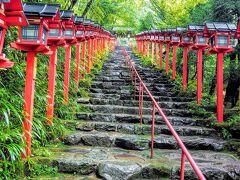 参道の石段を上がっていきます(^^)  夜にライトアップされた紅葉も、バエバエになること間違いなしですね(^^)